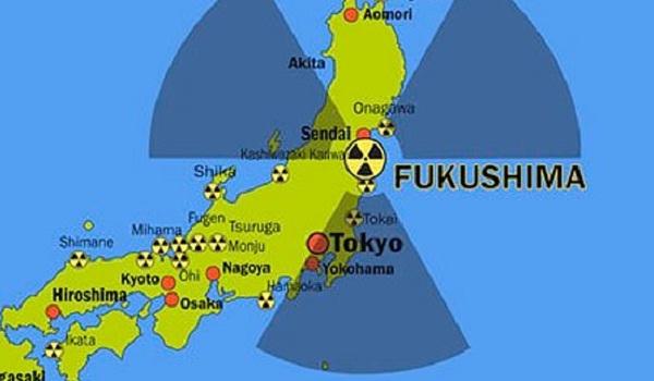 Onagawa ve Fukushima Nükleer