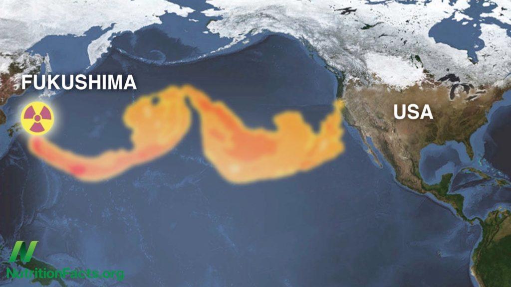 Fukushima'dan okyanusa akan radyosyonlu
