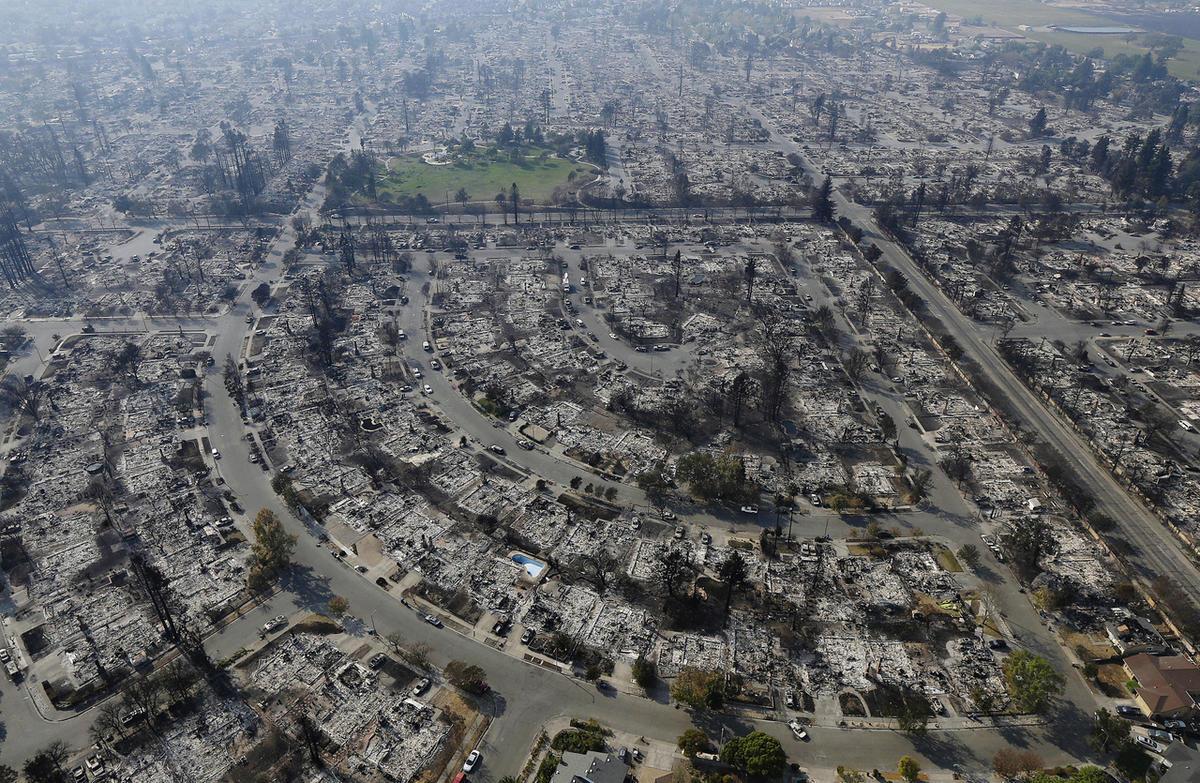 Kaliforniya yanmayan ağçlar
